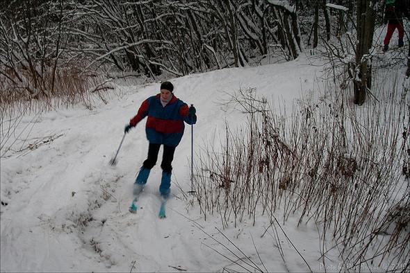 Во всех московских парках можно будет кататься на лыжах. Изображение № 1.