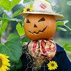 Где взять костюм на Хеллоуин: 12 прокатов и магазинов. Изображение № 9.