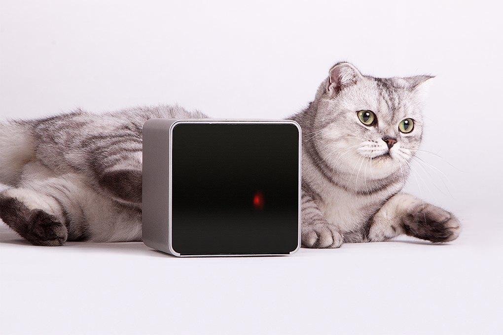 Petcube: Гаджет для общения с животными на расстоянии. Изображение № 3.