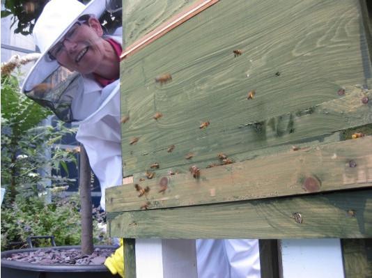 Как у них: «Городские пчёлы» в Лондоне. Изображение № 22.