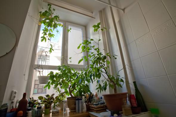 Квартира недели (Петербург). Изображение № 54.