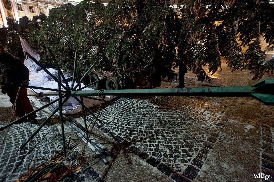 Фоторепортаж: Как устанавливали главную петербургскую ёлку. Изображение № 20.