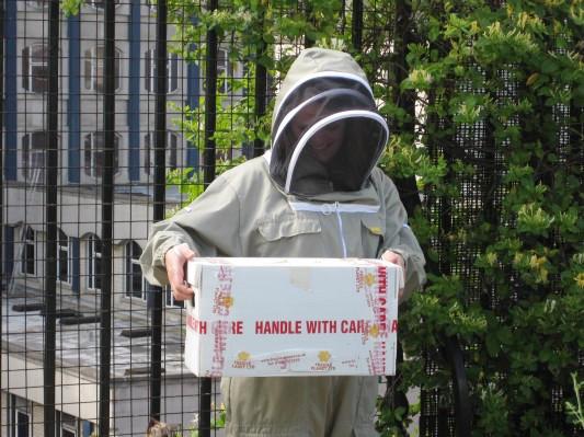 Как у них: «Городские пчёлы» в Лондоне. Изображение № 14.