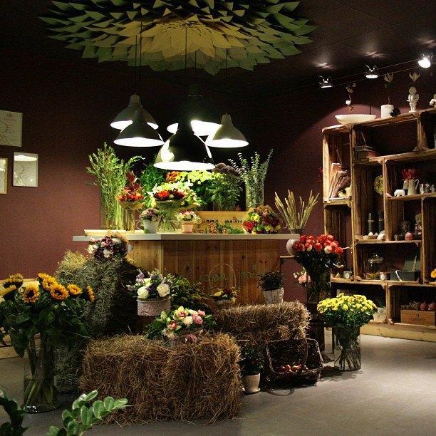 вот окунуть фото внешнего оформления цветочных магазинов дочка