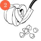 Рецепты шефов: Пенне ригате с мидиями и тыквой. Изображение № 5.