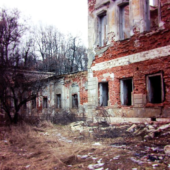 В зоне риска: Усадьба Гребнево. Изображение № 2.