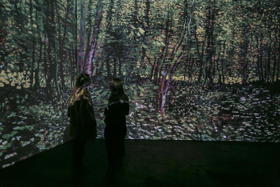 Выставка Van Gogh Alive . Изображение № 5.