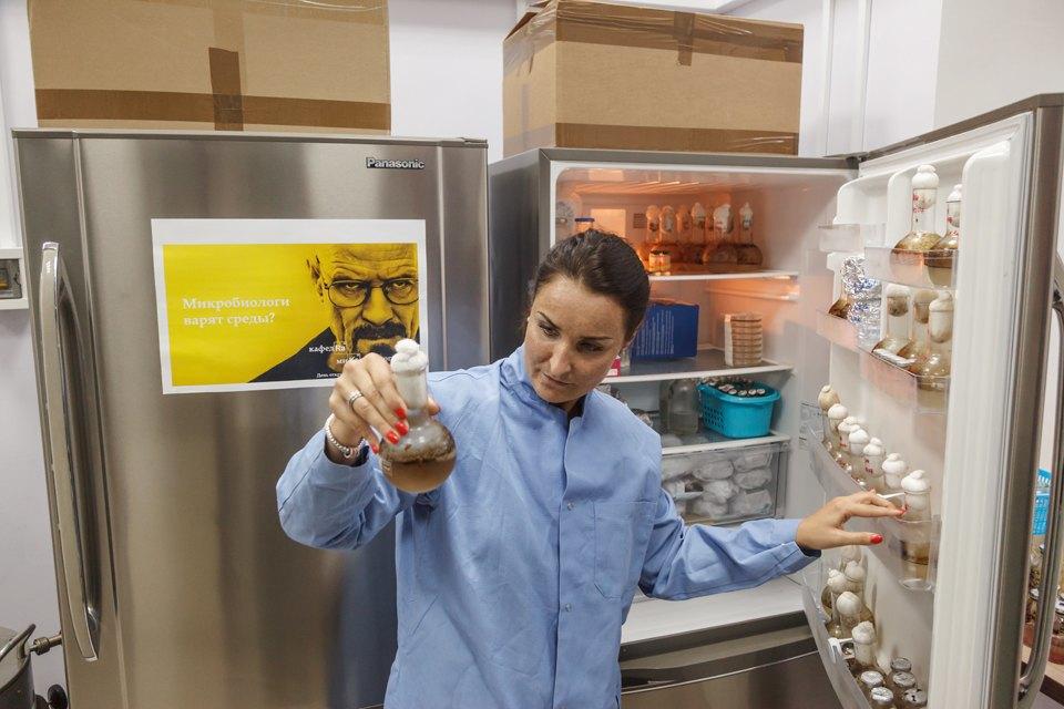Микробиолог Андрей Шестаков— ополезных микробах, вреде молока ифинансировании науки. Изображение № 13.