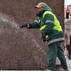 В Петербурге приняли программу охраны окружающей среды и обсудили пыльные бури. Изображение № 2.
