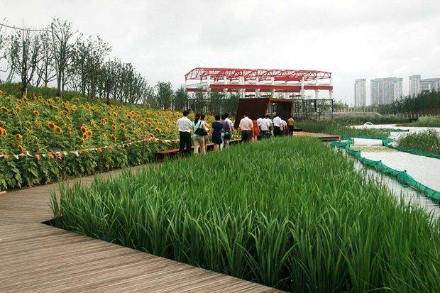 Идеи для города: Парк на месте свалки вТяньцзине. Изображение № 8.