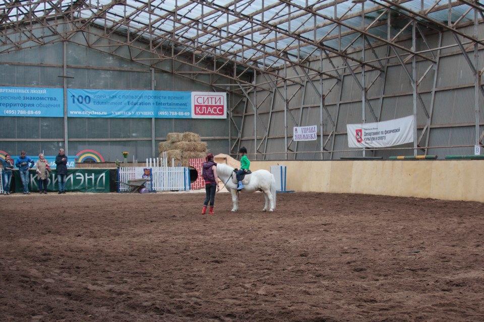 Кони, люди: Как конюшню, помогающую детям-инвалидам, выселяют из парка Горького. Изображение № 11.