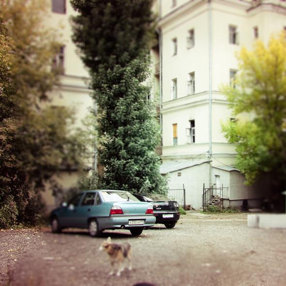 В зоне риска: Дом архитектора Никифорова. Изображение № 13.