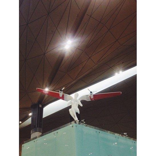 В новом терминале аэропорта установили скульптуры ангелов. Изображение № 2.