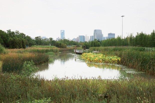 Идеи для города: Парк на месте свалки вТяньцзине. Изображение № 6.