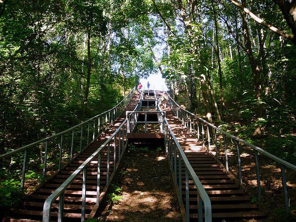 www.flickr.com/photos/serger. Изображение № 5.