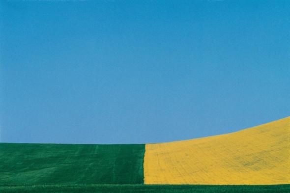 Выставку работ Франко Фонтаны покажут в «Росфото». Изображение № 4.
