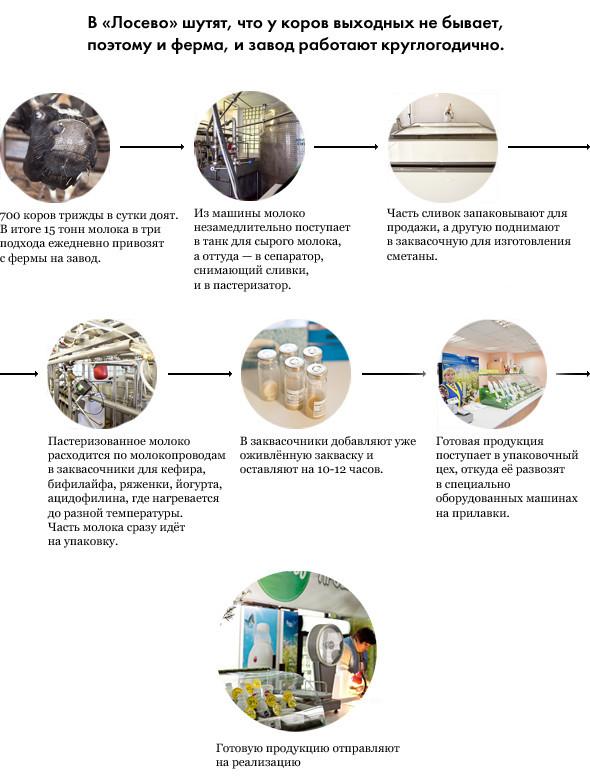 Репортаж: Как делают молочные продукты в «Лосево». Изображение № 1.
