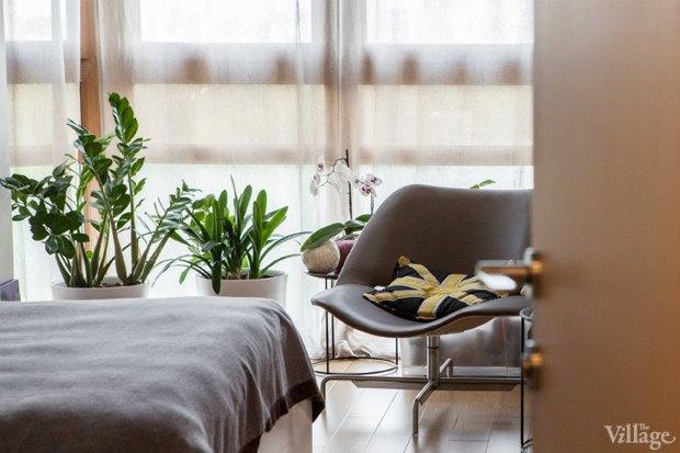 Как преобразить квартиру с помощью домашнихрастений. Изображение № 7.