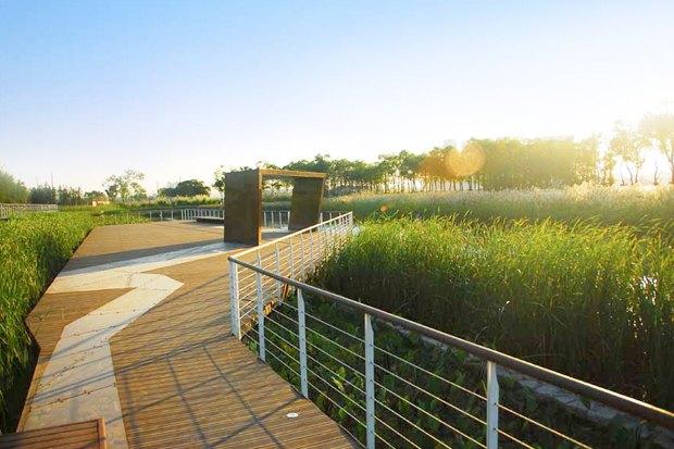 Идеи для города: Парк на месте свалки вТяньцзине. Изображение № 4.