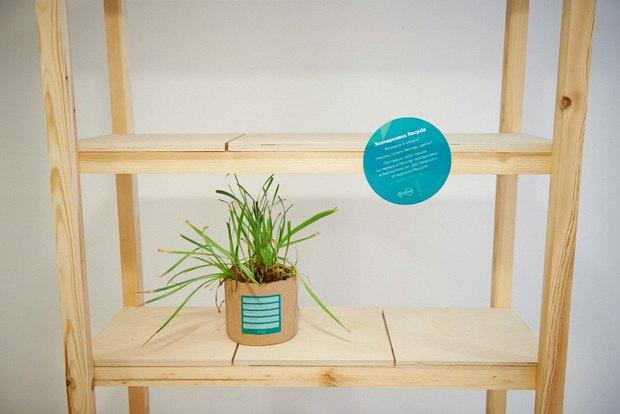Recycle организовали в библиотеке имени Достоевского экопарковки для цветов. Изображение № 3.