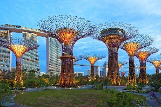 Дизайн от природы: Дом-лотос и супердеревья в Сингапуре. Изображение № 33.