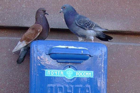 Посылка для вашего мальчика: 6 почтовых служб мира. Изображение № 44.
