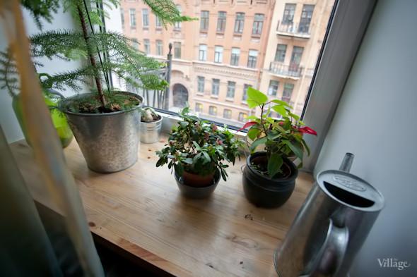Квартира недели (Петербург). Изображение № 71.