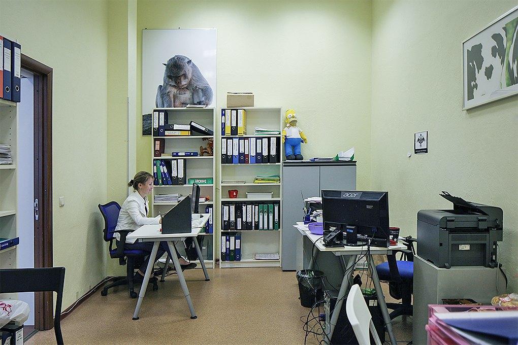 Рабочий стол: Алексей Гисак, «Воккер». Изображение № 6.