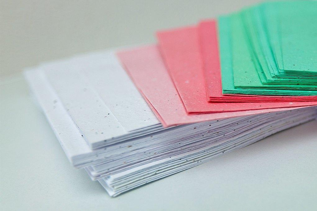 CardStory: Как московский лингвист запустила вКарелии производство бумаги. Изображение № 1.