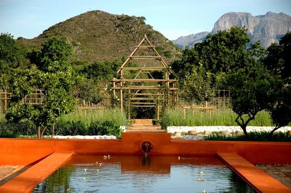 Иностранный опыт: Органическая еда в ЮАР. Изображение № 23.