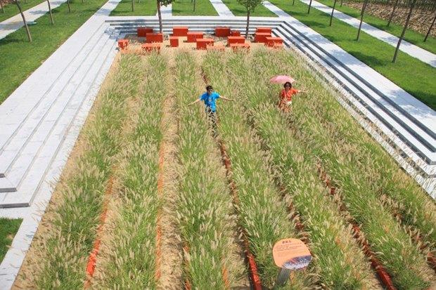 Идеи для города: Парк на месте свалки вТяньцзине. Изображение № 14.