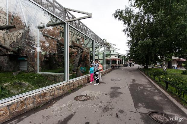 Как живёт и меняется Ленинградский зоопарк . Изображение № 22.