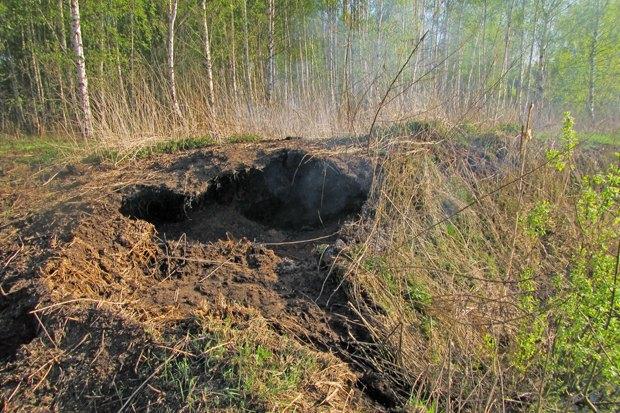 «2010 год может повториться» — Greenpeace о пожарах вПодмосковье. Изображение № 3.