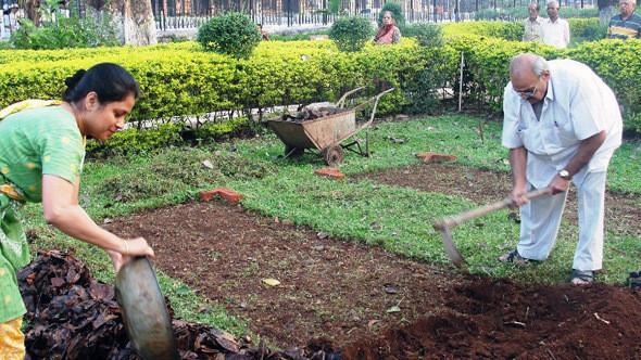 Весёлый фермер: 6 городских огородов. Изображение № 6.