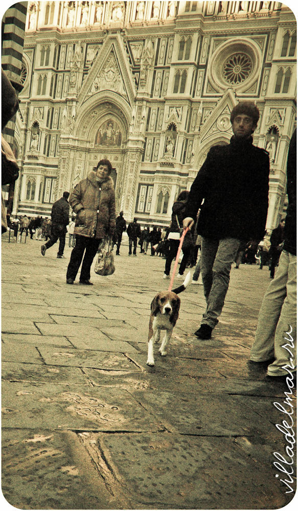 Изображение 22. Репортаж из живой Флоренции.. Изображение № 22.