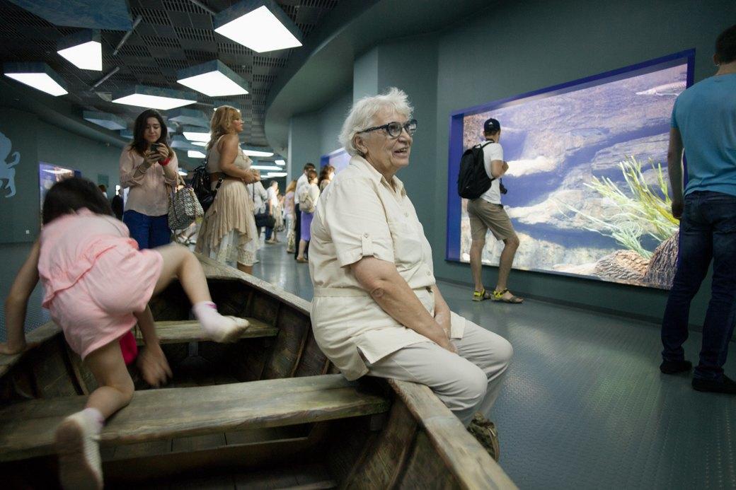 «Главные здесь — косатки, но самые милые — моржи»: На ВДНХ открылся океанариум. Изображение № 9.