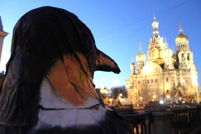 Пингвин вканале Грибоедова . Изображение № 2.
