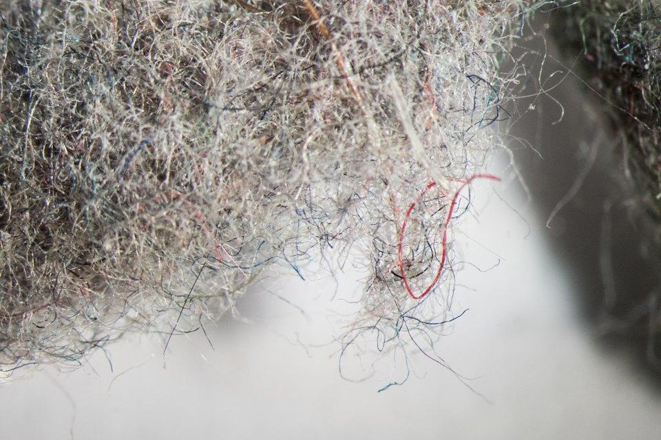 Как выглядит ваша домашняя пыль подмикроскопом. Изображение № 5.