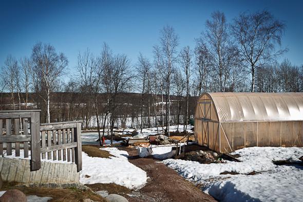 Народное хозяйство: 5 ферм, продукты которых можно купить в Петербурге. Изображение № 87.