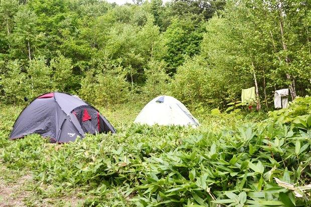 Личный опыт: Что такое волонтёрский лагерь. Изображение № 24.