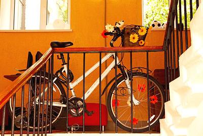 Городские байки: 11 велопрокатов в Петербурге. Изображение № 25.