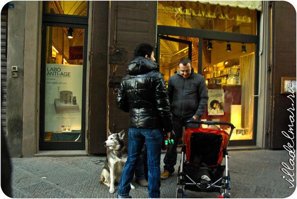 Изображение 8. Репортаж из живой Флоренции.. Изображение № 8.
