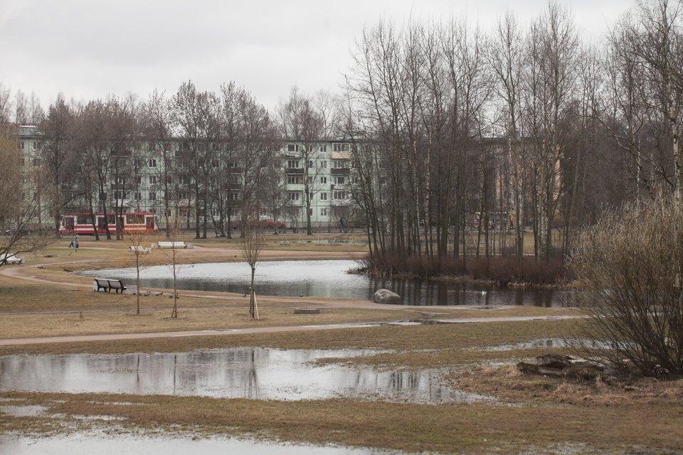 Как заброшенную молочную ферму вПетербурге превращают вобщественный центр . Изображение № 16.