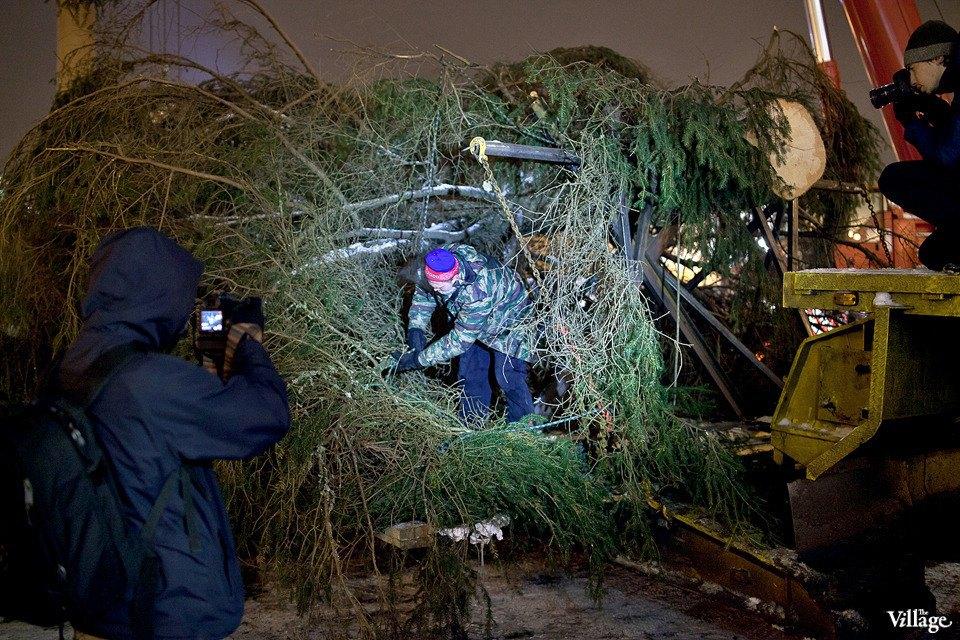 Фоторепортаж: Как устанавливали главную петербургскую ёлку. Изображение № 17.