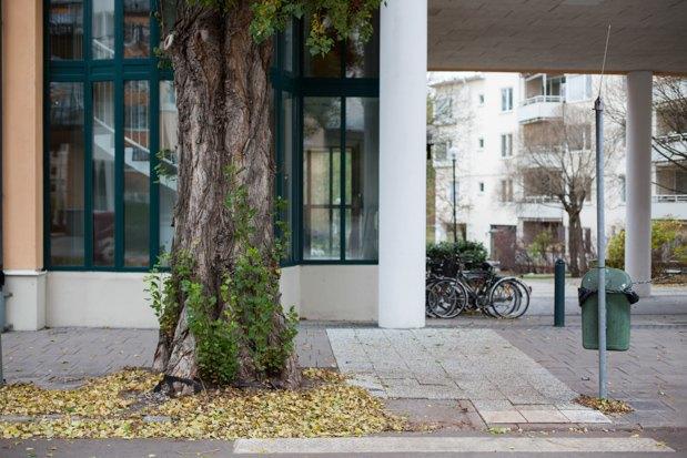 Главный архитектор Стокгольма: «Первые в городе — пешеходы, а не автомобилисты». Изображение № 7.
