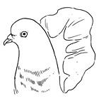 Рецепты шефов: Грудки голубя с орехами кешью и полентой. Изображение № 10.
