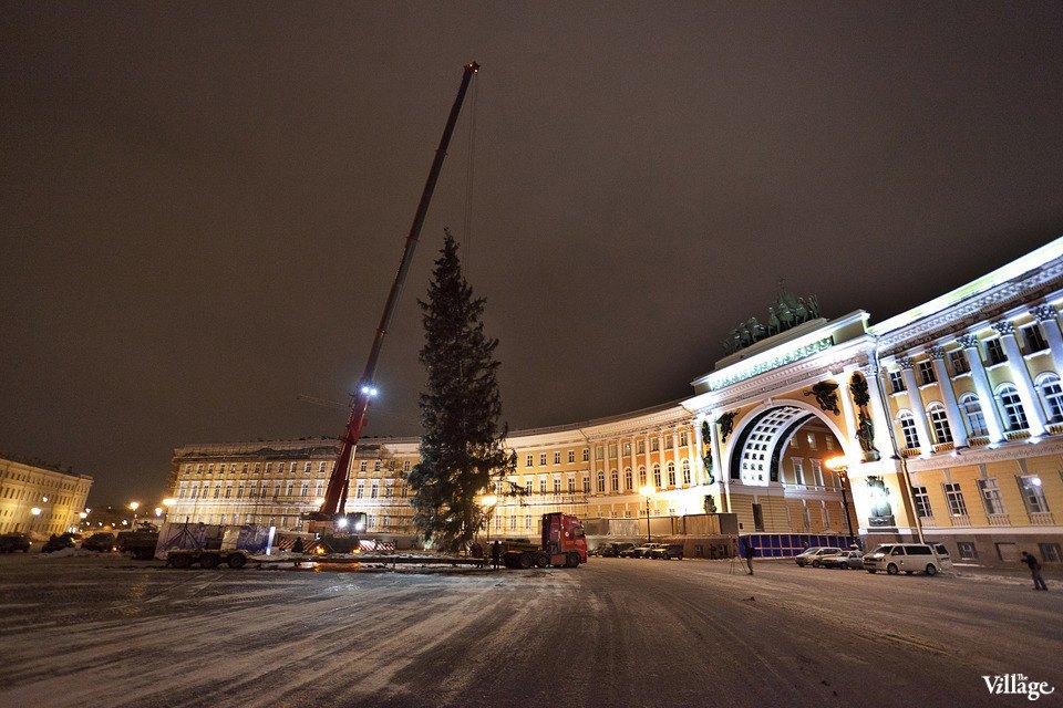 Фоторепортаж: Как устанавливали главную петербургскую ёлку. Изображение № 33.