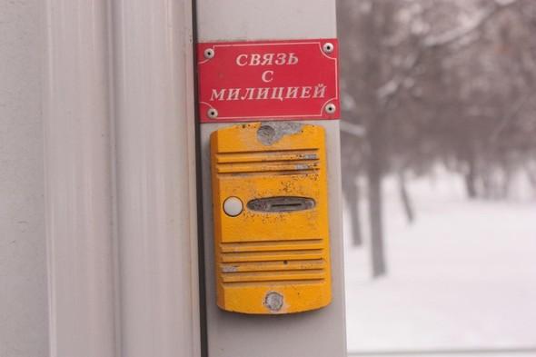 В лесопарках Москвы устанавливают фонари на солнечных батареях. Изображение № 5.