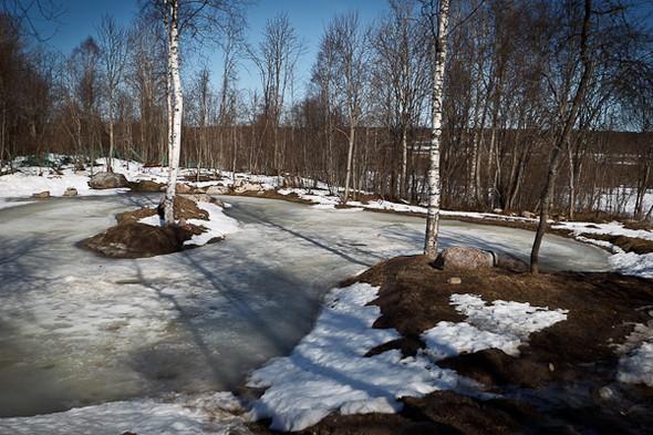 Народное хозяйство: 5 ферм, продукты которых можно купить в Петербурге. Изображение № 74.