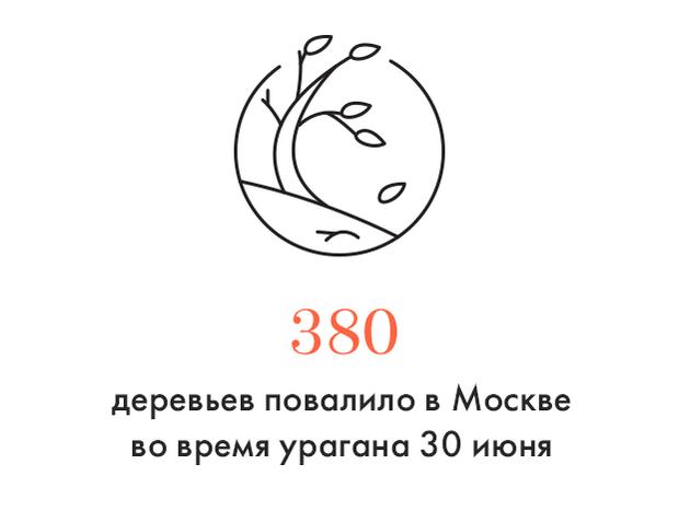 Цифра дня: Последствия урагана в Москве. Изображение № 1.